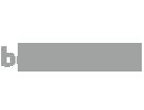 BERONET logo